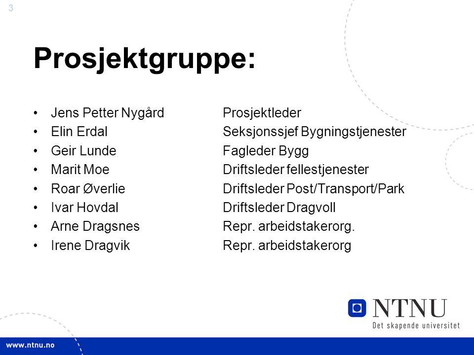 3 Prosjektgruppe: Jens Petter NygårdProsjektleder Elin ErdalSeksjonssjef Bygningstjenester Geir LundeFagleder Bygg Marit MoeDriftsleder fellestjeneste