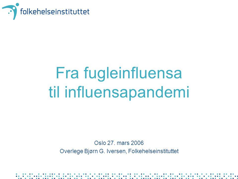 Fra fugleinfluensa til influensapandemi Oslo 27. mars 2006 Overlege Bjørn G. Iversen, Folkehelseinstituttet
