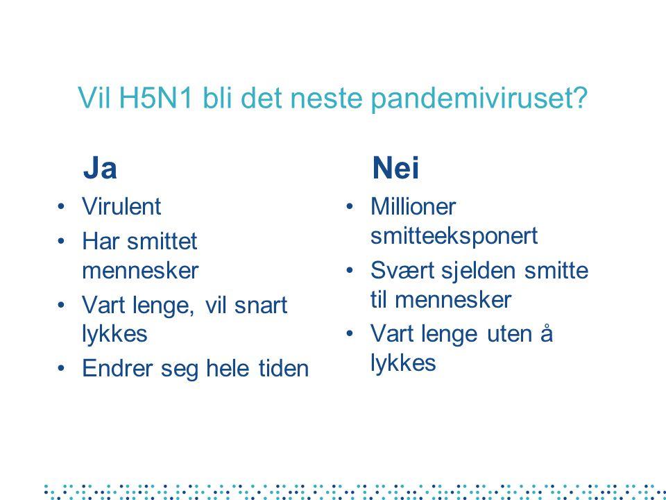 Vil H5N1 bli det neste pandemiviruset.