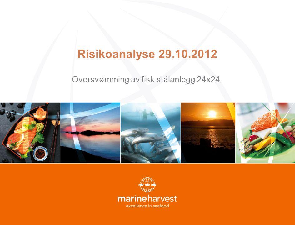 Risikoanalyse 29.10.2012 Oversvømming av fisk stålanlegg 24x24.