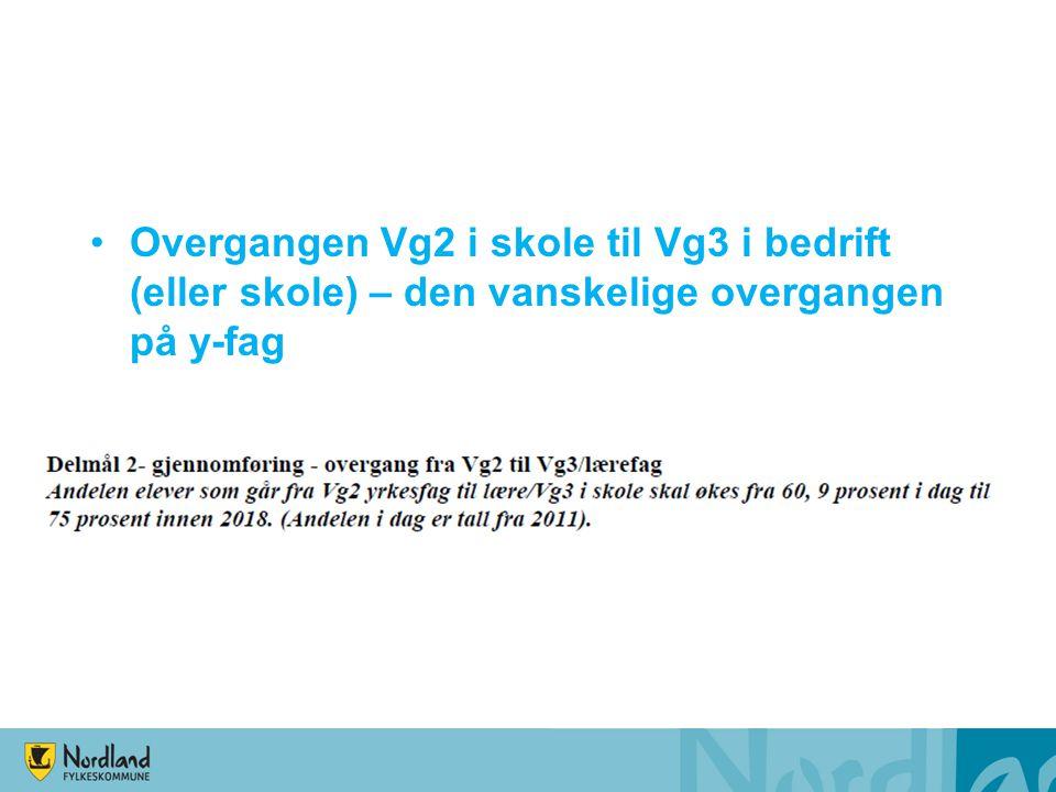 Overgangen Vg2 i skole til Vg3 i bedrift (eller skole) – den vanskelige overgangen på y-fag