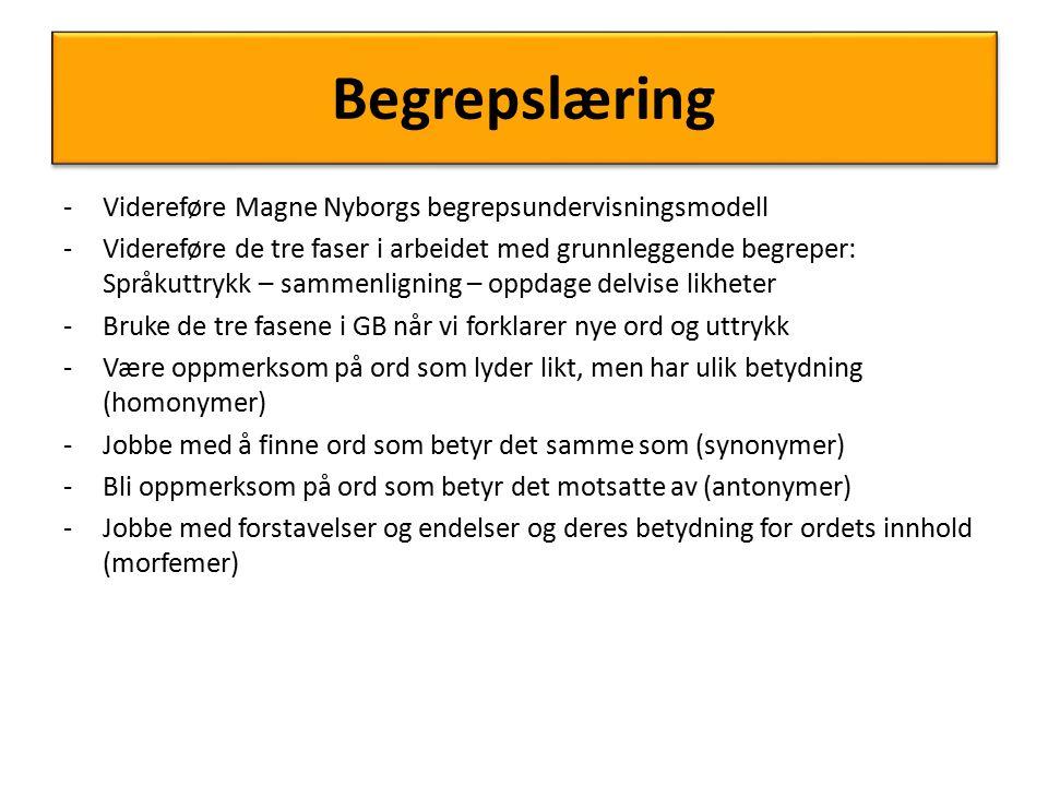 Begrepslæring -Videreføre Magne Nyborgs begrepsundervisningsmodell -Videreføre de tre faser i arbeidet med grunnleggende begreper: Språkuttrykk – samm