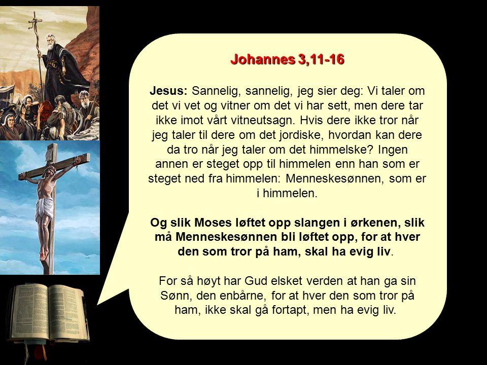 Johannes 3,11-16 Jesus: Sannelig, sannelig, jeg sier deg: Vi taler om det vi vet og vitner om det vi har sett, men dere tar ikke imot vårt vitneutsagn.