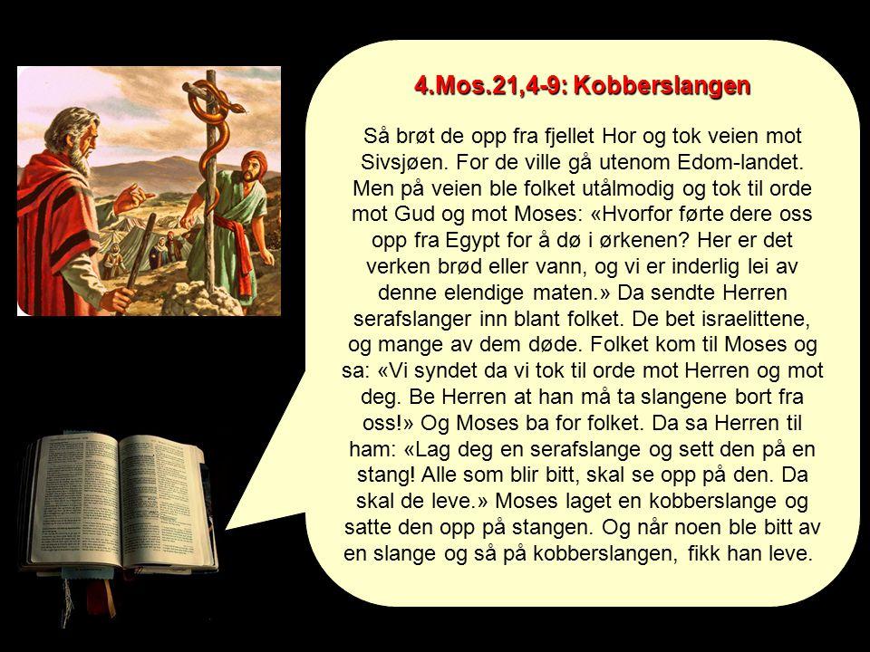4.Mos.21,4-9: Kobberslangen Så brøt de opp fra fjellet Hor og tok veien mot Sivsjøen.