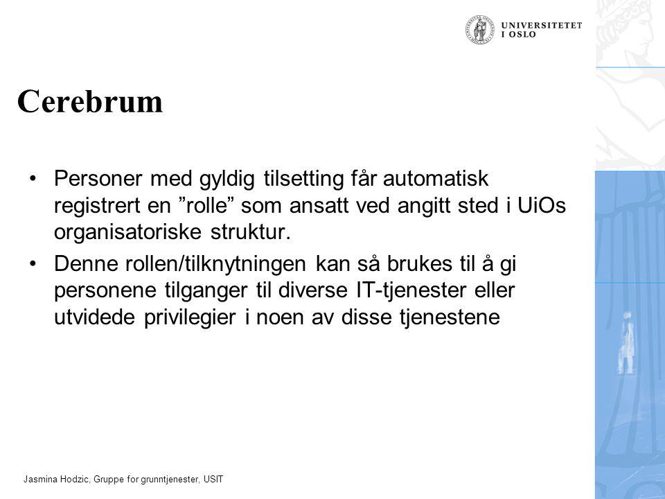 Jasmina Hodzic, Gruppe for grunntjenester, USIT Cerebrum Personer med gyldig tilsetting får automatisk registrert en rolle som ansatt ved angitt sted i UiOs organisatoriske struktur.
