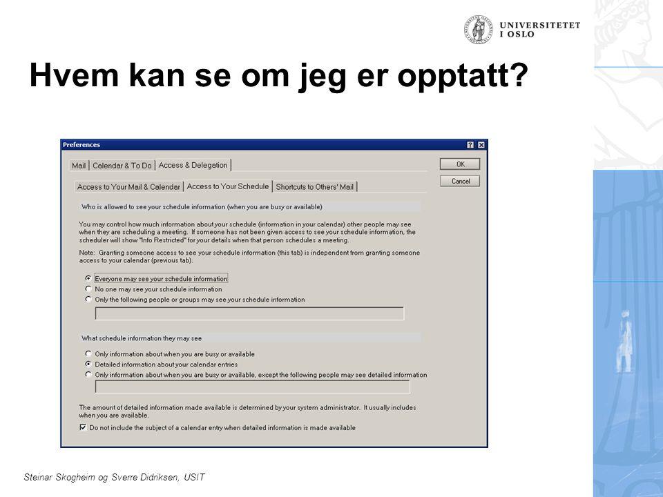 Steinar Skogheim og Sverre Didriksen, USIT Hvem kan se om jeg er opptatt?