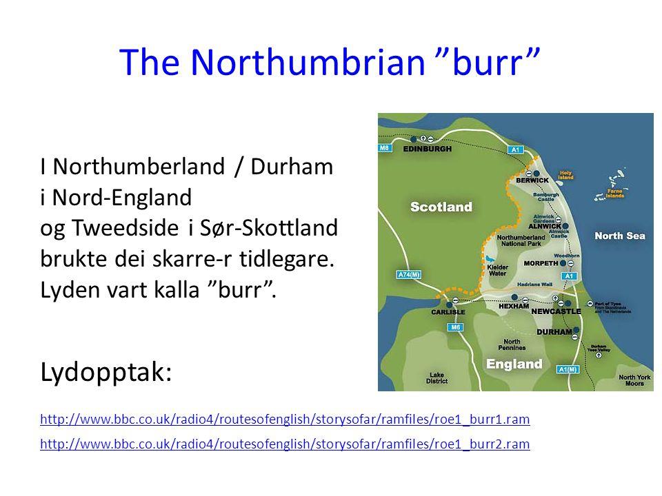 """The Northumbrian """"burr"""" I Northumberland / Durham i Nord-England og Tweedside i Sør-Skottland brukte dei skarre-r tidlegare. Lyden vart kalla """"burr""""."""