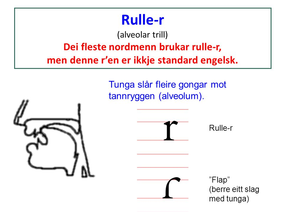 Rulle-r (alveolar trill) Dei fleste nordmenn brukar rulle-r, men denne r'en er ikkje standard engelsk. Tunga slår fleire gongar mot tannryggen (alveol