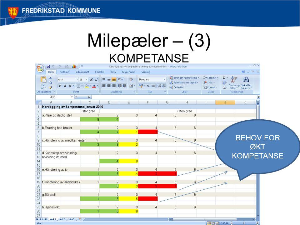 Milepæler – (3) KOMPETANSE Samhandling Ambulerende team - Åpen omsorg Holmen BEHOV FOR ØKT KOMPETANSE