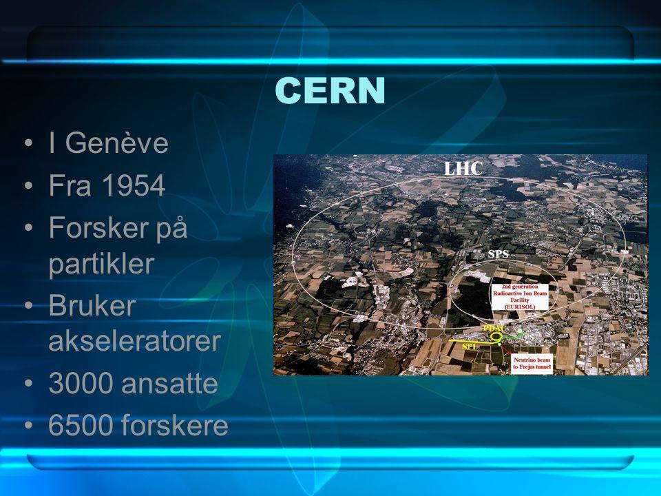 CERN I Genève Fra 1954 Forsker på partikler Bruker akseleratorer 3000 ansatte 6500 forskere