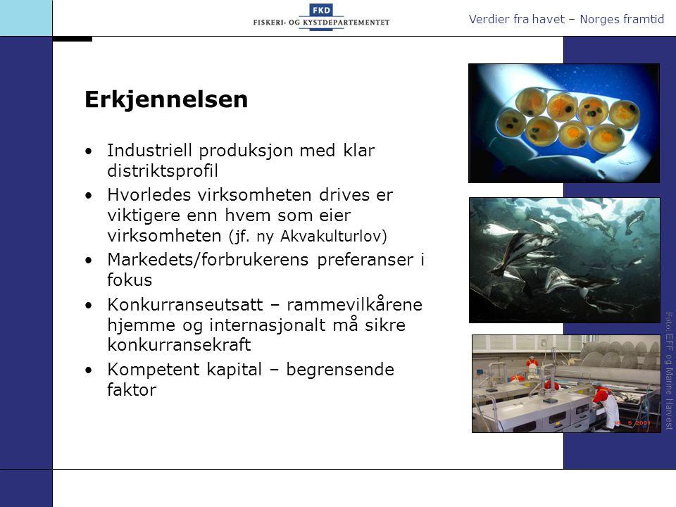 Verdier fra havet – Norges framtid Foto: Hugo Lande Foto: EFF 1 – Næringens ansvar Å drive kostnadseffektivt (egen lønnsomhet) Sikre egen kapitaltilgang, kompetanseoppbygging, produktutvikling, m.m.