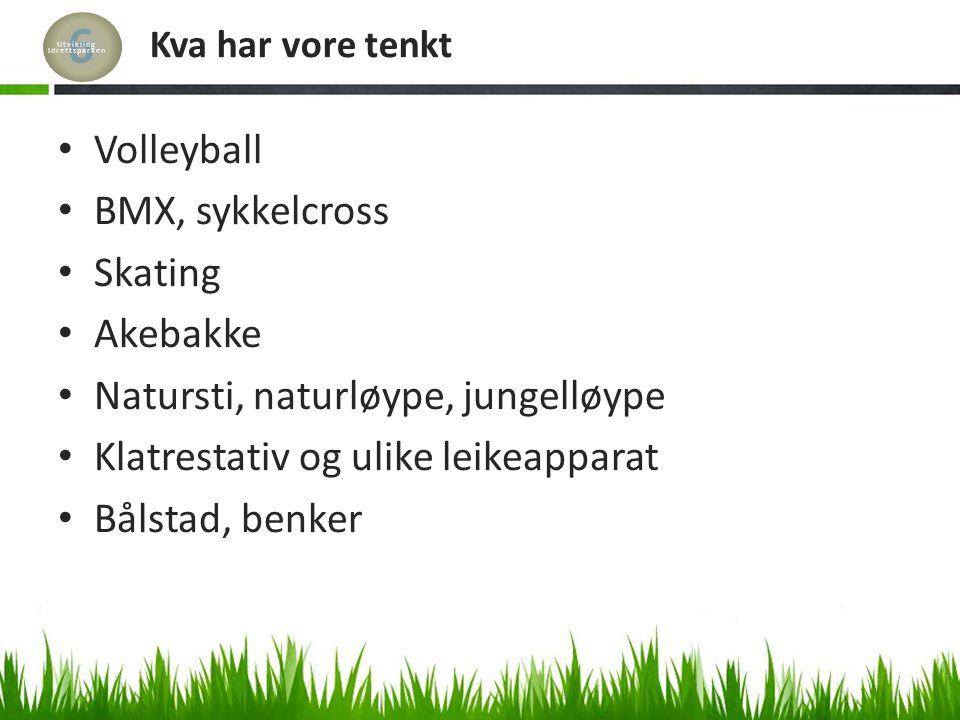 Kva har vore tenkt Volleyball BMX, sykkelcross Skating Akebakke Natursti, naturløype, jungelløype Klatrestativ og ulike leikeapparat Bålstad, benker 6