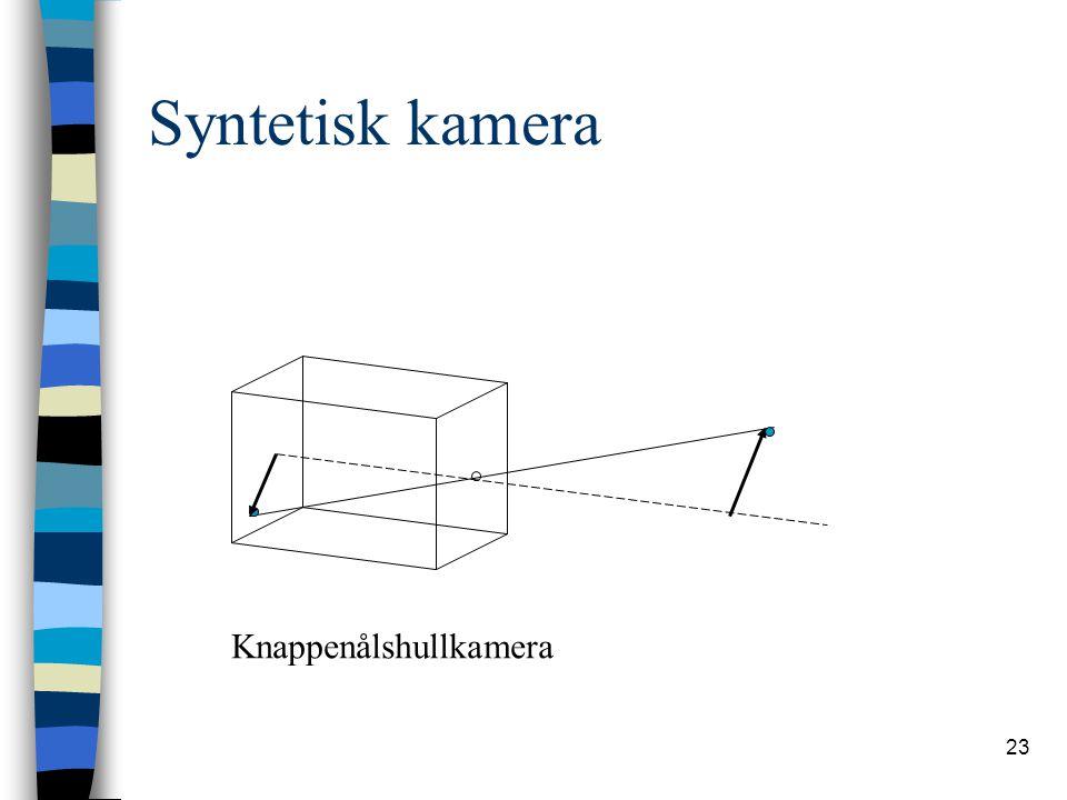 23 Syntetisk kamera Knappenålshullkamera