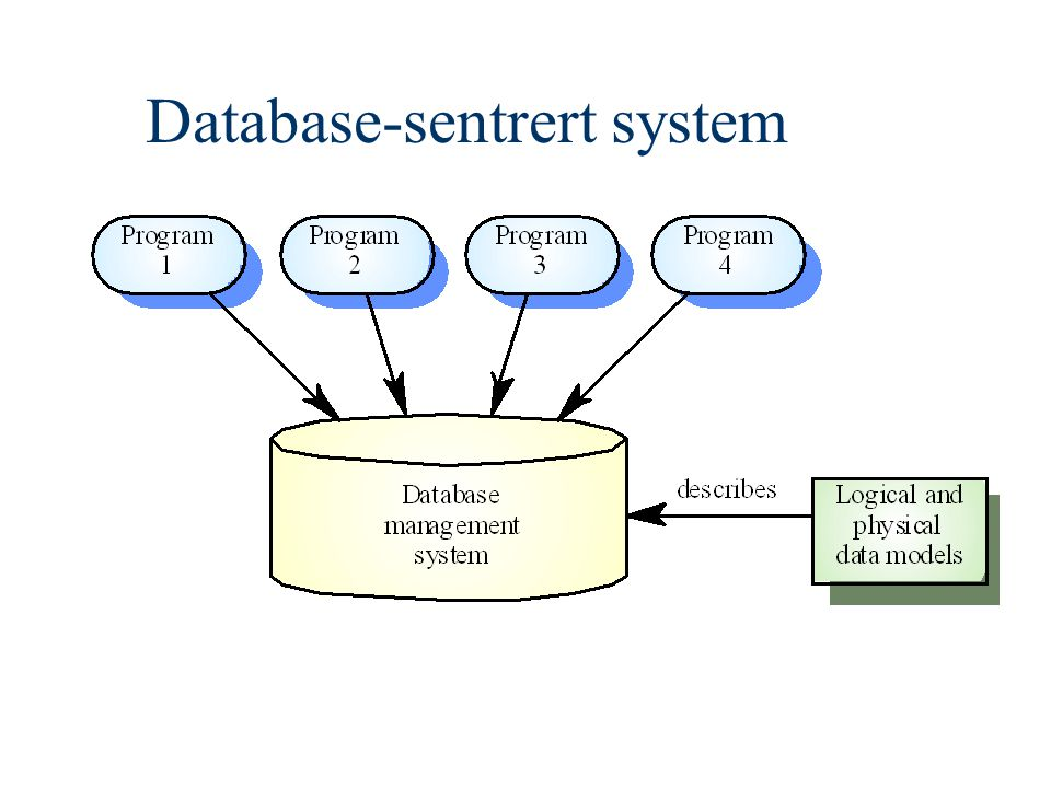 Database-sentrert system