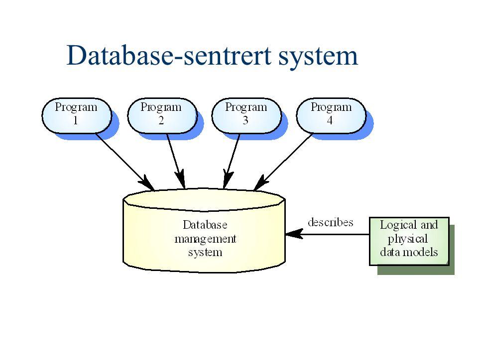 Database-sentrert system