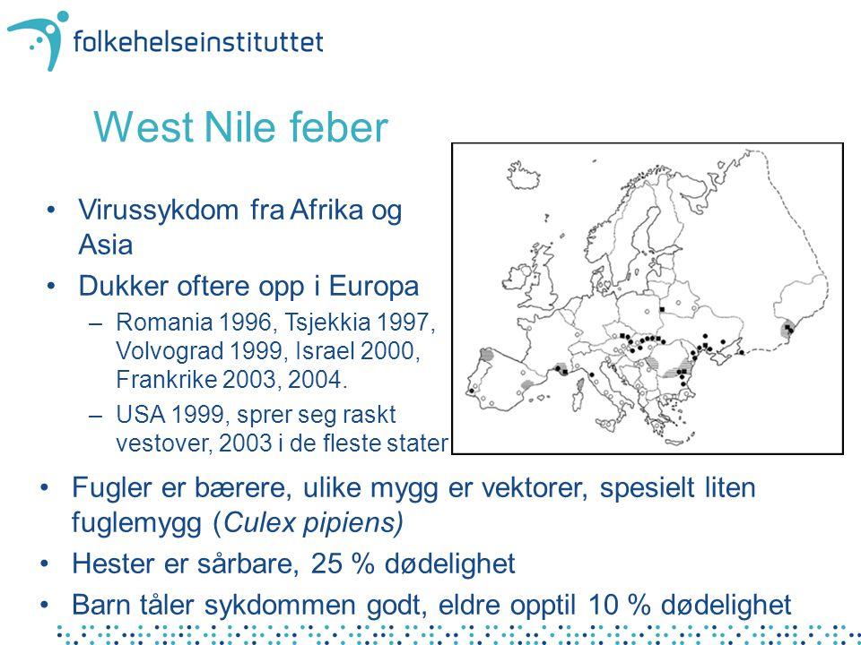West Nile feber Virussykdom fra Afrika og Asia Dukker oftere opp i Europa –Romania 1996, Tsjekkia 1997, Volvograd 1999, Israel 2000, Frankrike 2003, 2004.