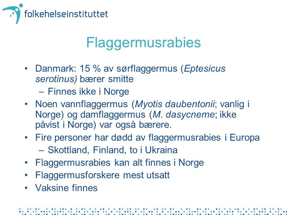 Flaggermusrabies Danmark: 15 % av sørflaggermus (Eptesicus serotinus) bærer smitte –Finnes ikke i Norge Noen vannflaggermus (Myotis daubentonii; vanlig i Norge) og damflaggermus (M.