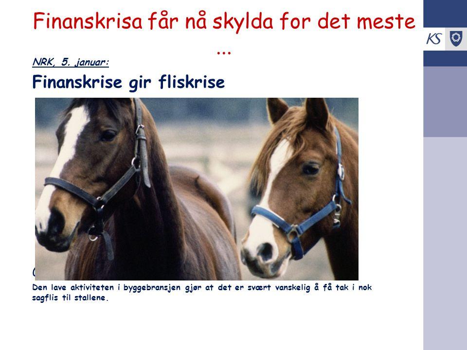 Finanskrisa får nå skylda for det meste... NRK, 5. januar: Finanskrise gir fliskrise Gjør det utrivelig å være hest i Norge. Den lave aktiviteten i by