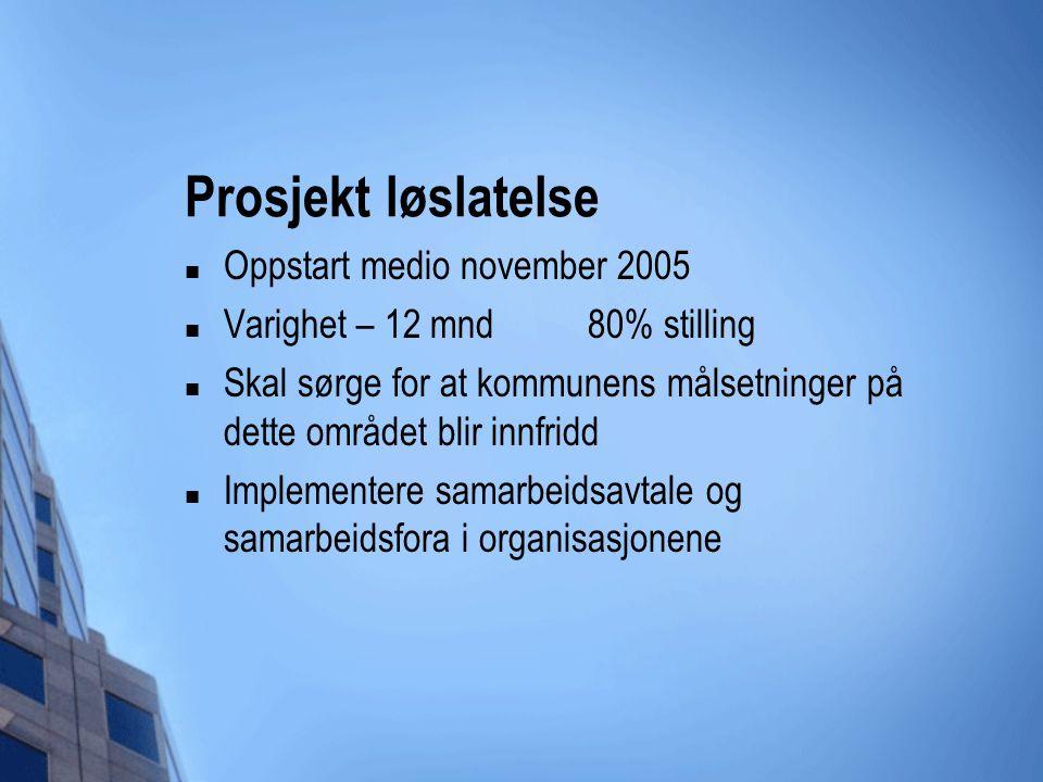 Prosjekt løslatelse Oppstart medio november 2005 Varighet – 12 mnd 80% stilling Skal sørge for at kommunens målsetninger på dette området blir innfrid