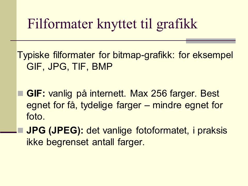 Filformater knyttet til grafikk Typiske filformater for bitmap-grafikk: for eksempel GIF, JPG, TIF, BMP GIF: vanlig på internett.