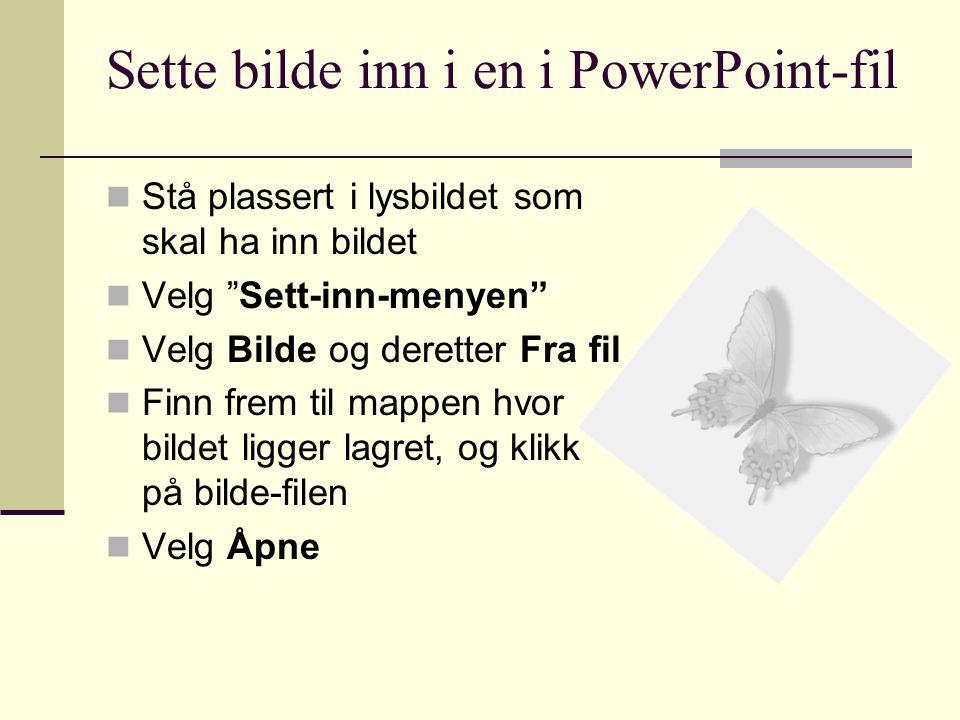 Sette bilde inn i en i PowerPoint-fil Stå plassert i lysbildet som skal ha inn bildet Velg Sett-inn-menyen Velg Bilde og deretter Fra fil Finn frem til mappen hvor bildet ligger lagret, og klikk på bilde-filen Velg Åpne