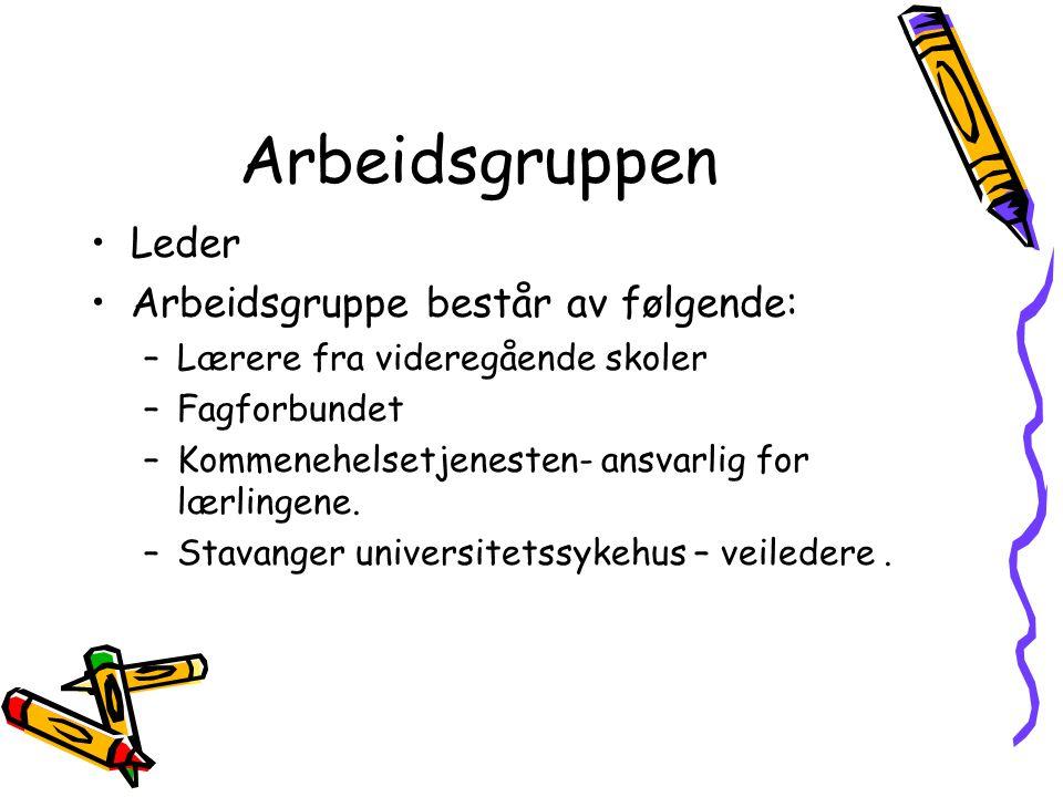 Arbeidsgruppen Leder Arbeidsgruppe består av følgende: –Lærere fra videregående skoler –Fagforbundet –Kommenehelsetjenesten- ansvarlig for lærlingene.