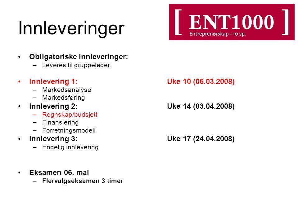 Innleveringer Obligatoriske innleveringer: –Leveres til gruppeleder. Innlevering 1: Uke 10 (06.03.2008) –Markedsanalyse –Markedsføring Innlevering 2:U