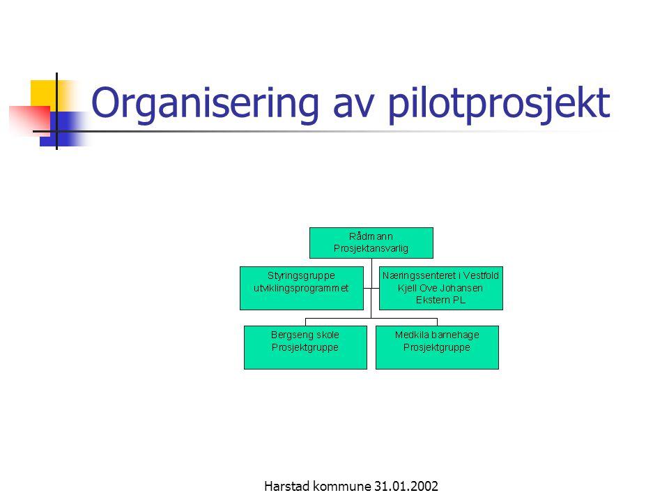 Harstad kommune 31.01.2002 Styringskonsept med brukerfokus
