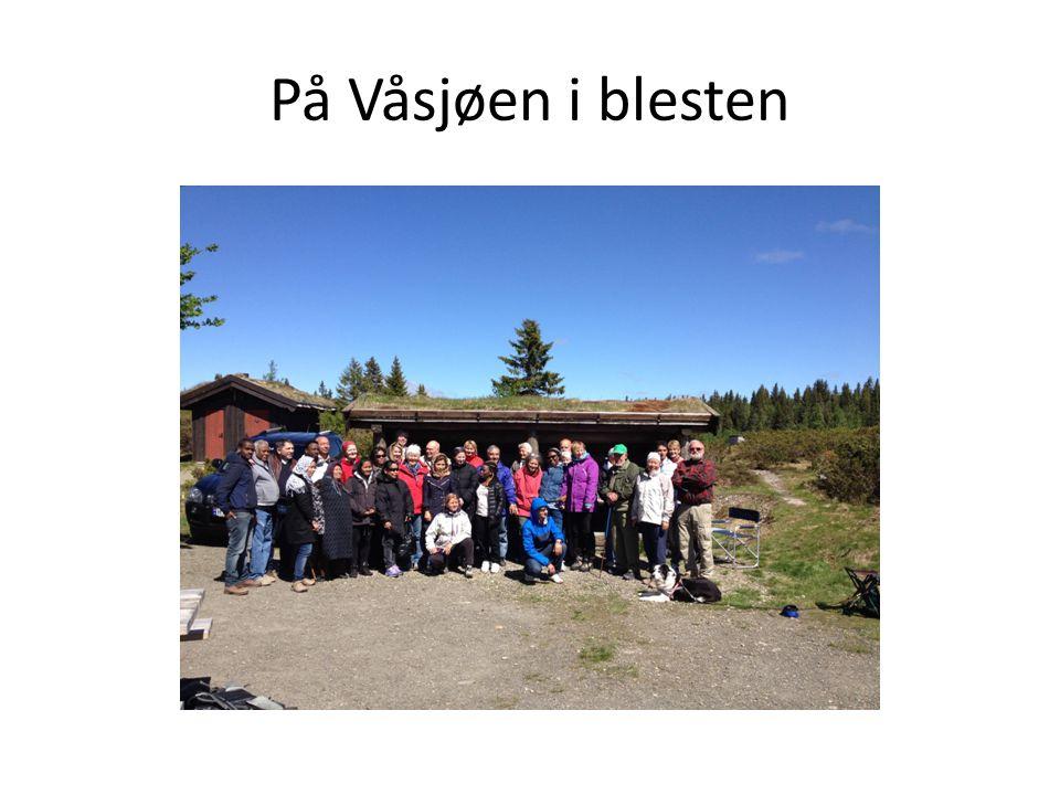 På Våsjøen i blesten
