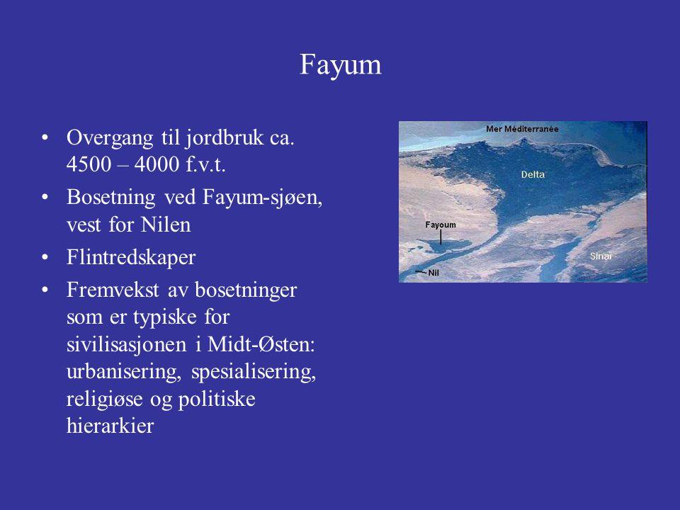 Fayum-området: særlig kjent for naturalistiske portretter fra kiste- og sarkofaglokk Her: mannsportrett ca 160 v.t.