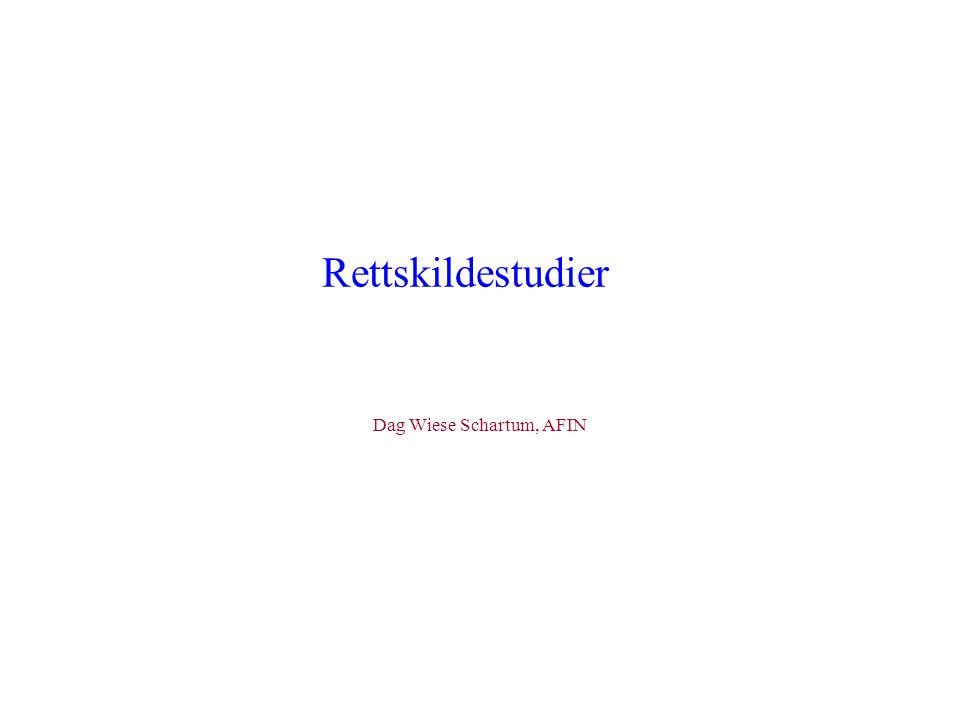 Rettskildestudier Dag Wiese Schartum, AFIN