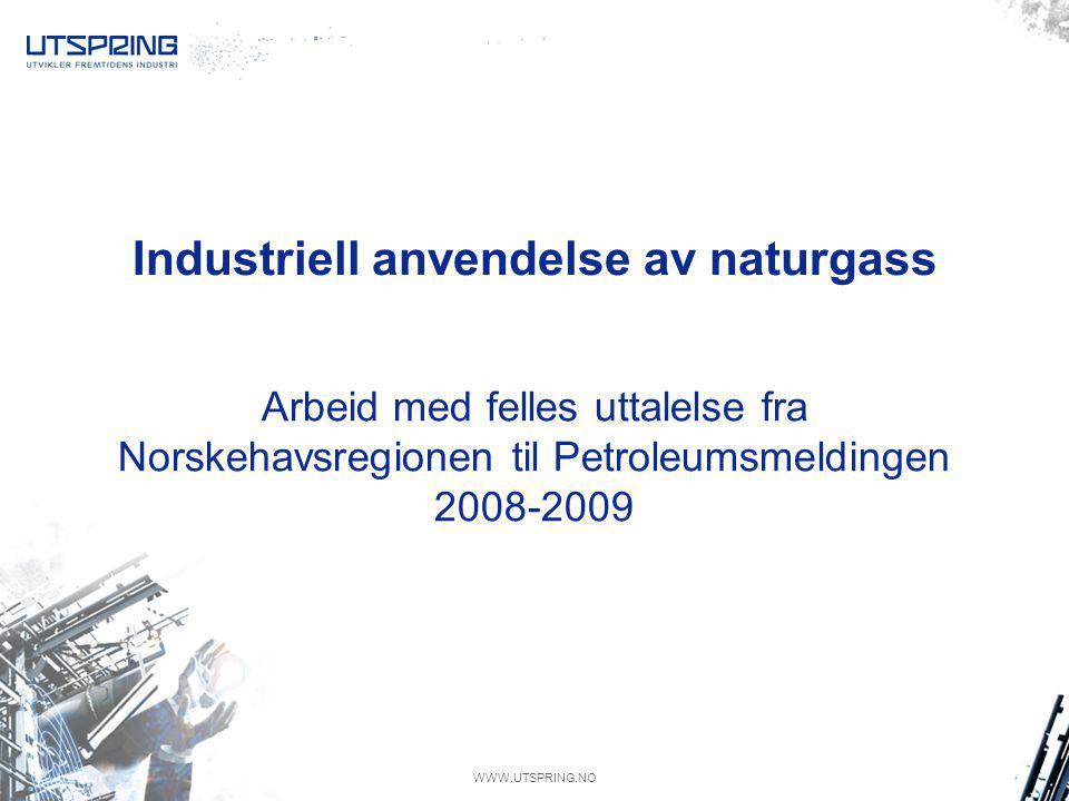WWW.UTSPRING.NO Industriell anvendelse av naturgass Arbeid med felles uttalelse fra Norskehavsregionen til Petroleumsmeldingen 2008-2009