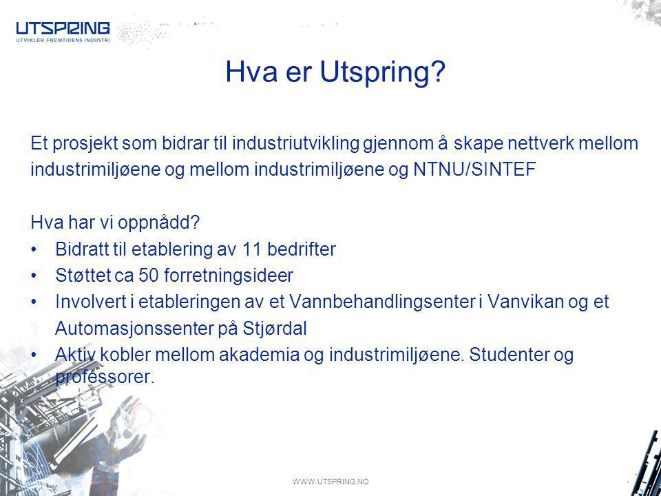 WWW.UTSPRING.NO Bakgrunn Gassprisen Få oppmerksomhet rundt industriell anvendelse Støtte arbeidet sentralt med å få endret beslutningsregimet Stå sammen.