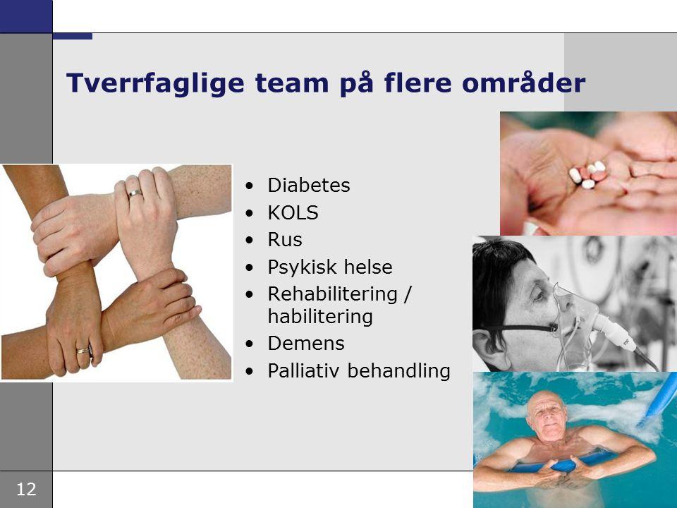 12 Tverrfaglige team på flere områder Diabetes KOLS Rus Psykisk helse Rehabilitering / habilitering Demens Palliativ behandling