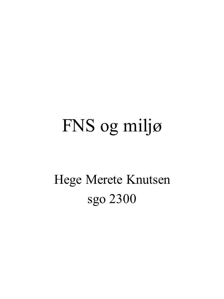 FNS og miljø Hege Merete Knutsen sgo 2300