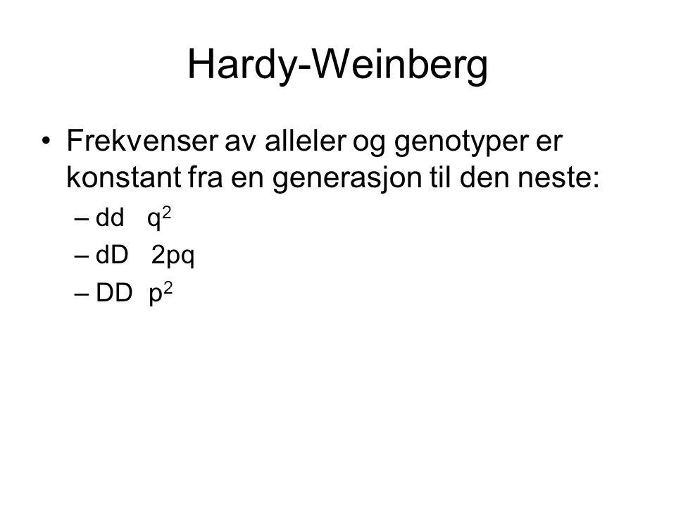 Hardy-Weinberg Frekvenser av alleler og genotyper er konstant fra en generasjon til den neste: –dd q 2 –dD 2pq –DD p 2
