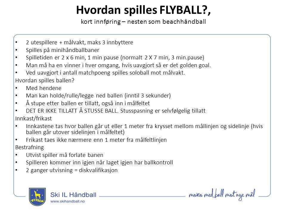 Hvordan spilles FLYBALL?, kort innføring – nesten som beachhåndball Hvordan scorer man.