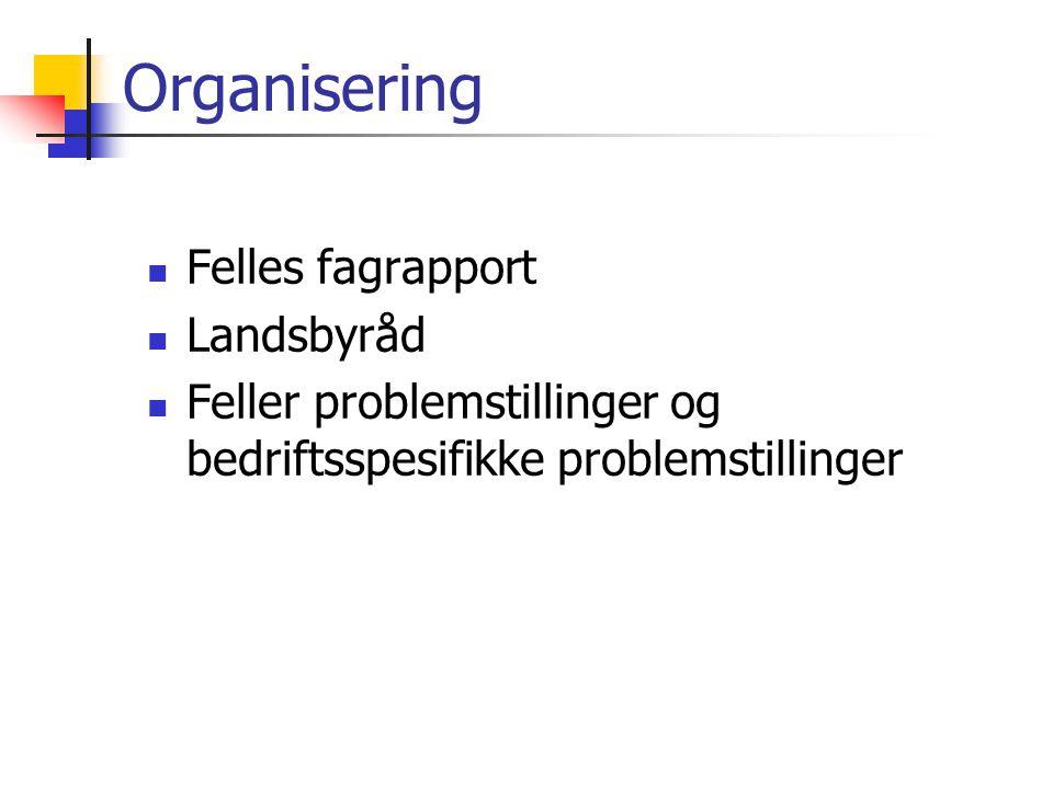 Organisering Felles fagrapport Landsbyråd Feller problemstillinger og bedriftsspesifikke problemstillinger