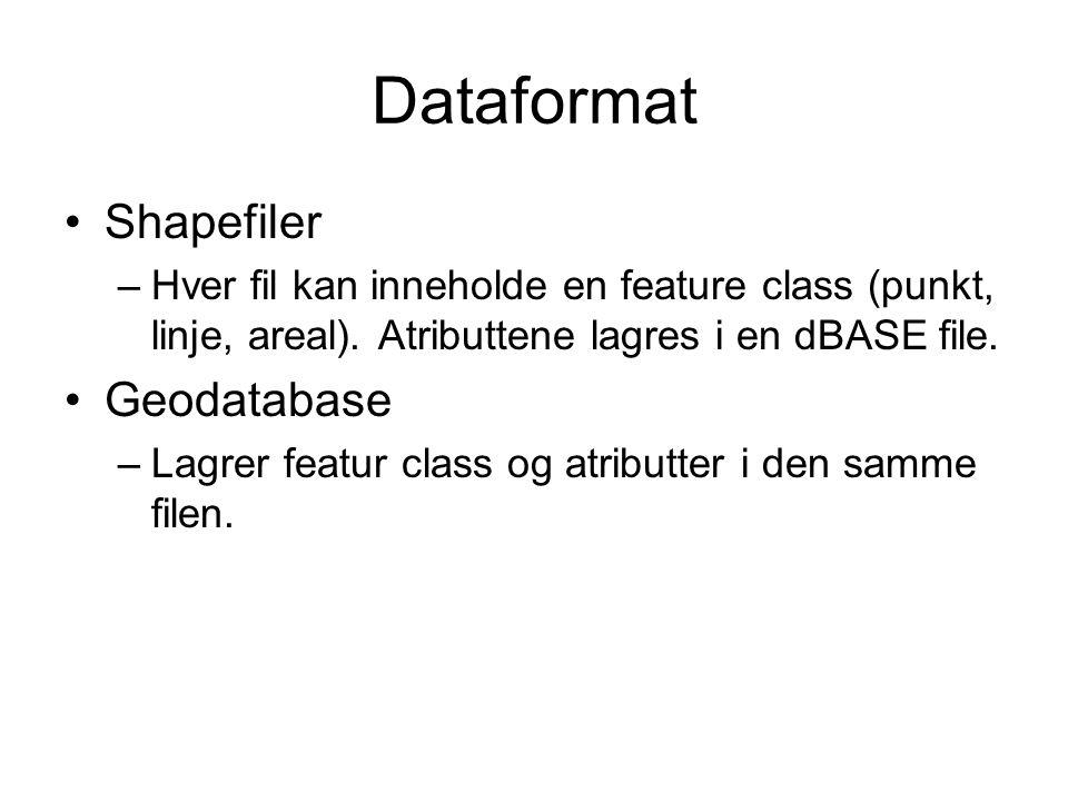 Dataformat Shapefiler –Hver fil kan inneholde en feature class (punkt, linje, areal). Atributtene lagres i en dBASE file. Geodatabase –Lagrer featur c