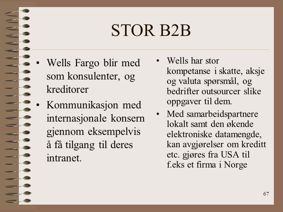 66 Liten B2B E-løsninger- styringsverktøy for lønn, likviditet, kreditt, skatt, sikkerhet, konsulent tjenester Kan ta over alle områder bl.a. økonomi