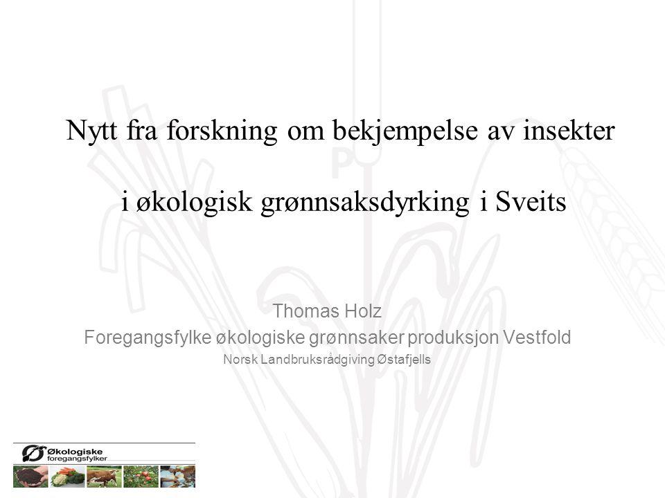 P Nytt fra forskning om bekjempelse av insekter i økologisk grønnsaksdyrking i Sveits Thomas Holz Foregangsfylke økologiske grønnsaker produksjon Vestfold Norsk Landbruksrådgiving Østafjells