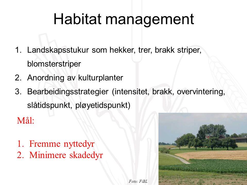 Habitat management 1.Landskapsstukur som hekker, trer, brakk striper, blomsterstriper 2.Anordning av kulturplanter 3.Bearbeidingsstrategier (intensitet, brakk, overvintering, slåtidspunkt, pløyetidspunkt) Mål: 1.Fremme nyttedyr 2.Minimere skadedyr Foto: FiBL