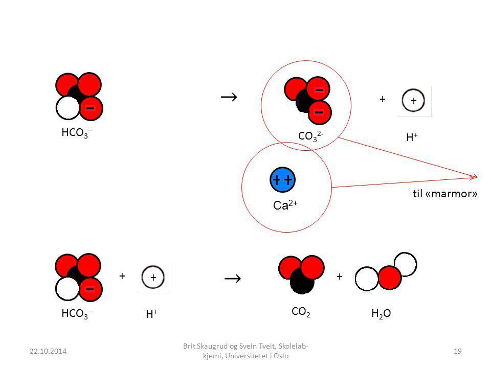 22.10.2014 Brit Skaugrud og Svein Tveit, Skolelab- kjemi, Universitetet i Oslo + + + HCO 3 − H+H+ CO 2 H2OH2O HCO 3 − + + H+H+ CO 3 2- til «marmor» Ca