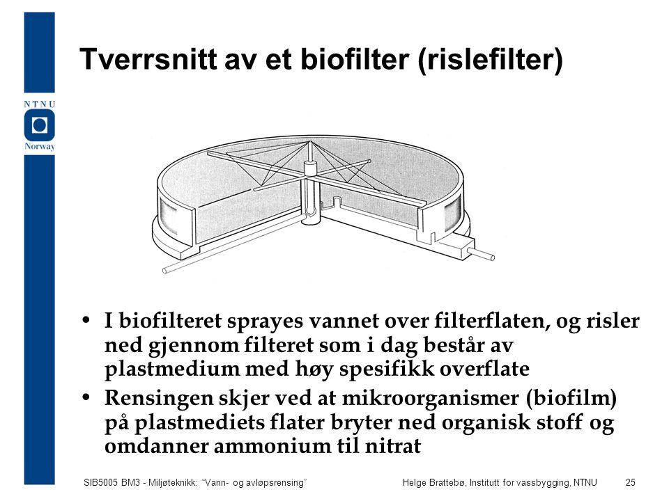 """SIB5005 BM3 - Miljøteknikk: """"Vann- og avløpsrensing""""Helge Brattebø, Institutt for vassbygging, NTNU 25 Tverrsnitt av et biofilter (rislefilter) I biof"""