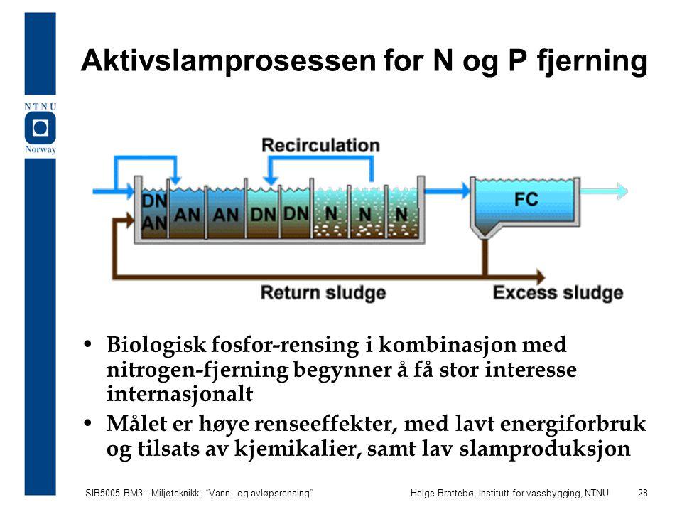 """SIB5005 BM3 - Miljøteknikk: """"Vann- og avløpsrensing""""Helge Brattebø, Institutt for vassbygging, NTNU 28 Aktivslamprosessen for N og P fjerning Biologis"""