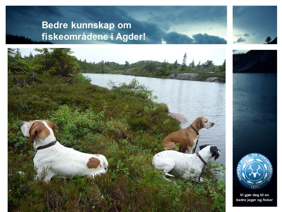 Bedre kunnskap om fiskeområdene i Agder!