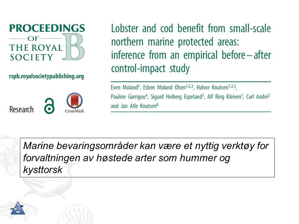 Marine bevaringsområder kan være et nyttig verktøy for forvaltningen av høstede arter som hummer og kysttorsk