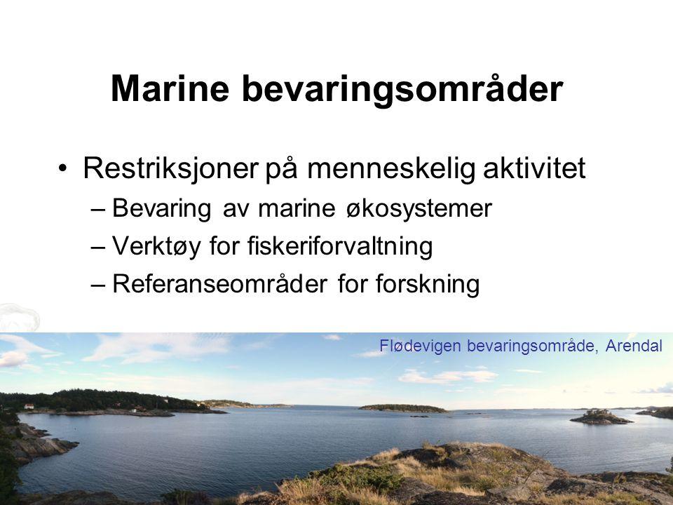 Marine bevaringsområder Restriksjoner på menneskelig aktivitet –Bevaring av marine økosystemer –Verktøy for fiskeriforvaltning –Referanseområder for forskning Flødevigen bevaringsområde, Arendal