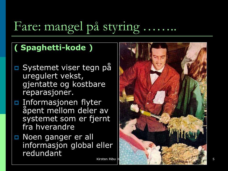 Kirsten Ribu HiO 20055 Fare: mangel på styring ……..