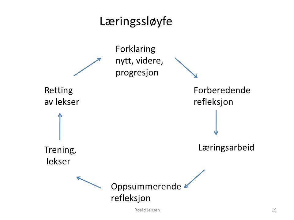 Forklaring nytt, videre, progresjon Forberedende refleksjon Læringsarbeid Oppsummerende refleksjon Trening, lekser Retting av lekser Læringssløyfe 19R